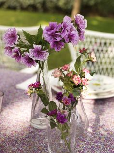 Create a simple and charming setting for fresh flowers with multiple glass vases!