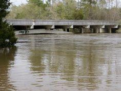 Media Information Insurance : bridge