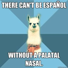 linguist llama, espanol, for all the SLPs & AuDs out there :)