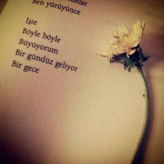 #cahitzarifoğlu #şiir #siir #alıntı #alinti #edebiyat