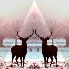 Deers, triangle and pastel colors.