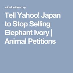 Tell Yahoo! Japan to Stop Selling Elephant Ivory | Animal Petitions