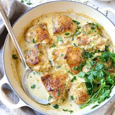 Food Collection: Chicken Creamy Sauce