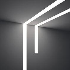 Dinamica - Plexiform