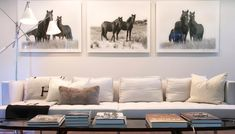 HOME DECOR – EQUESTRIAN STYLE – portraits of horses in repetition. Coffee table books stacked on table.