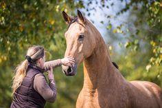 Denkspiele halten Pferde bei Laune und sorgen für eine artgemäße Auslastung ihrer Denkfähigkeiten. © www.slawik.com