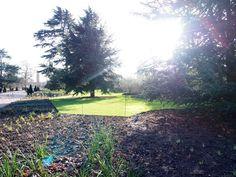 Kew Gardens Londres - Jardim