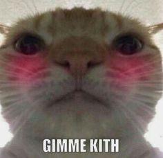 love reaction memes friends - love reaction memes - love reaction memes hearts - love reaction memes for him - love reaction memes cute - love reaction memes kpop - love reaction memes anime - love reaction memes bts - love reaction memes friends Memes Estúpidos, Stupid Memes, Funny Memes, Reaction Pictures, Funny Pictures, Kiss Meme, Memes Lindos, Cute Love Memes, Mood Pics