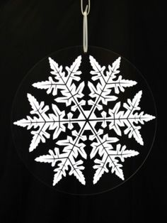 Snowflakes - absolutely beautiful.