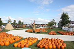 Didier Farms - Greenhouse, Farmstand, Hayrides, Corn, Flowers, and Pumpkins in Lake County, IL - Home Page