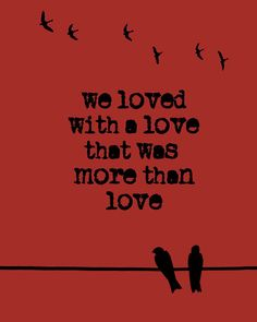 """We loved with a love that was more than love."" From the poem Annabel Lee by Edgar Allan Poe. Make Love, More Than Love, Edgar Allan Poe, Edgar Allen Poe Tattoo, Great Quotes, Quotes To Live By, Inspirational Quotes, The Words, Book Quotes"