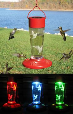 Solar Powered Hummingbird Feeder. Color changing feeder at night.By day, it's a functional 4-port nectar feeder that draws Hummingbirds for your viewing pleasure. By night, the feeder becomes an LED color-changing light show. $29.99