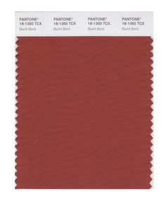 Pantone Smart Swatch 18-1350 Burnt Brick