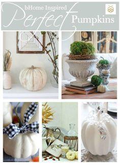 Perfect pumpkins fall decor | Edith & Evelyn Vintage | http://www.edithandevelynvintage.com