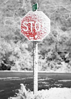 Snowy Stop Sign A stop sign at the intersection of County Highway JJ and Moe Road near Mount Horeb, Wisconsin draped in snow. I Love Snow, I Love Winter, Winter Day, Winter Snow, Winter White, Winter Season, Winter Christmas, Snow Scenes, Winter Scenes