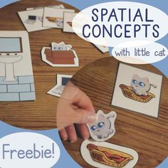 Spatial Concepts/Prepositions FREEBIE from Cat Says Meow (Speech Therapy, Special Education) - repinned by @PediaStaff – Please Visit ht.ly/63sNt for all our pediatric therapy pins
