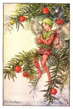 Yew Flower Fairy Print c.1927 Fairies by Cicely Mary Barker