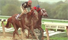 My Flag (by Easy Goer- Personal Ensign)beating Cara Rafaela in the 1995 Breeders' Cup Juvenile Fillies. The next year she would win the Coaching Club American Oaks, the Gazelle and the Ashland, and finish 3rd in the Belmont Stakes. As a broodmare, she has produced Storm Flag Flying, On Parade, and Leading the Parade.