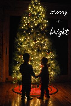 High ISO, small aperture and slow shutter speed. put camera on a tri pod, no lights besides tree. Cute Christmas card idea
