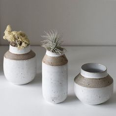 Just the middle one is left and there is a shorter one on the webshop (link in bio) #vases #flowers #airplants #handmade #pottery #ceramics #webshop #ceramicstudio #winter #copenhagen