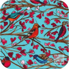 Michael Miller Wing Song Fabric in Aqua. by The Metre Wings Song, Owl, Fabric Birds, Wall Fabric, Pillow Fabric, Canvas Fabric, Michael Miller Fabric, Retro Fabric, Aqua Fabric