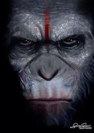 PLANET OF THE APES!! Nice painting of ceazar!