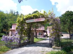 Residence Il Glicine #marche #hotel #holiday #residence http://www.marchetourismnetwork.it/?place=9380