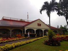 dole plantation. #oahu #hawaii