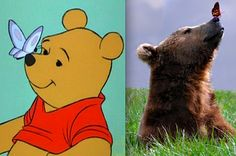 21 Pictures Of Adorable Disney Animals In Real Life