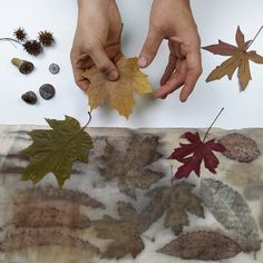 Arts And Crafts, Diy Crafts, Fabric Manipulation, Diy Projects To Try, Shibori, Textile Art, Decoupage, Nature, Flowers
