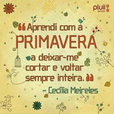 E já que entramos na PRIMAVERA, inspire-se com as delicadezas da poetiza Cecília Meireles.