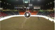 Must watch pole bending video, that's awesome! I want that horse!