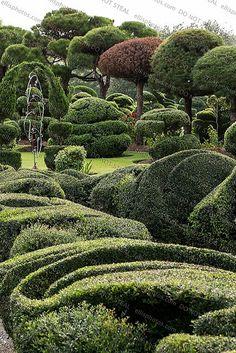 Pearl Fryar Topiary Garden Bishopville, SC | Flickr - Photo Sharing!