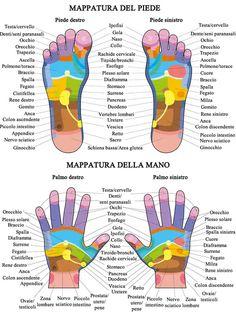 Wellness Fitness, Yoga Fitness, Health And Wellness, Health Fitness, Foot Reflexology, Mudras, Muscle Anatomy, Yoga Positions, Alternative Health
