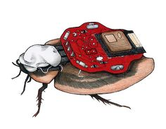 """RoboRoach 