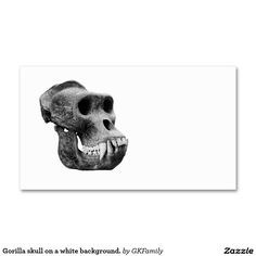 Gorilla skull on a white background. Double-Sided standard business cards (Pack of 100)