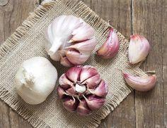 10 ricette a base di aglio