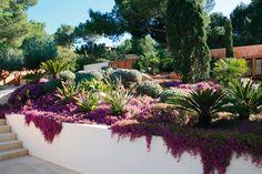 Ibiza Rocks - Stephen Woodhams Ibiza Gardens (houseandgarden.co.uk)