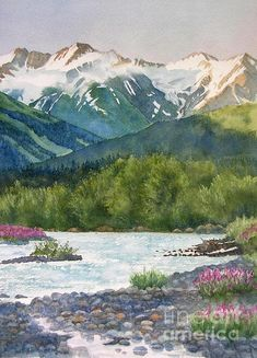 Flower Watercolor Painting - Glacier Creek Summer Evening by Sharon Freeman Art Aquarelle, Art Watercolor, Watercolor Pictures, Watercolor Landscape Paintings, Landscape Prints, Watercolor Flowers, Landscape Design, Mountain Paintings, Mountain Landscape