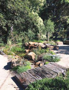 Australian Garden Design, Australian Native Garden, Tropical Garden Design, Cottage Garden Design, Lee Garden, Native Gardens, Pond Landscaping, Coastal Gardens, Natural Garden
