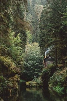 Parc national de la Suisse saxonne @ andyto - I'd love to live here. Anyone down to be roommates in this cabin? Beautiful World, Beautiful Places, Beautiful Forest, Peaceful Places, Beautiful Beautiful, Beautiful Person, Hello Gorgeous, Parc National, National Parks