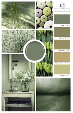 Are the same old neutrals putting you to sleep? We've got a better way to relax the mood in your room: sage green is an earthy, versatile choice, and the perfectly tranquil backdrop for a bedroom. Green Wall Color, Green Paint Colors, Paint Color Schemes, Wall Colors, House Colors, Popular Paint Colors, Sage Green Bedroom, Sage Green Walls, Green Rooms