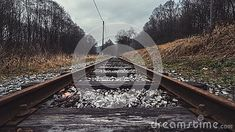 train-track-middle-forest-road-to-infinity Forest Road, Train Tracks, Nature Photos, Railroad Tracks, Infinity, Middle, Infinite