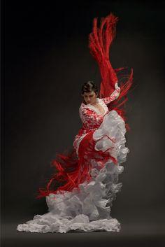Flamenco Festival 2010: Noche Flamenca & Soledad Barrio at Boston ...