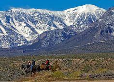Las Vegas has scenery too! Mount Charleston, Nevada.