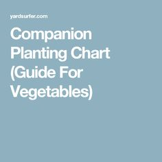 Companion Planting Chart (Guide For Vegetables)