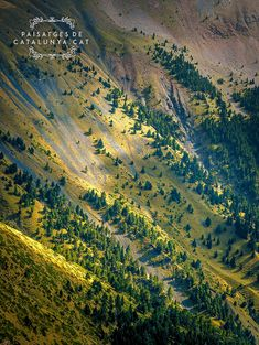Tosa d'Alp, Pirineu de Girona #pyreness #catalonia #catalunya #mountain #snow #barcelona #spring #forest #landsacpe #Puigcerdà #lamolina Grand Canyon, Spain, Pyrenees, Mountains, Nature, Barcelona, Landscapes, Travel, Outdoor