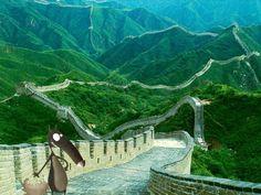 Loup sur la muraille de Chine