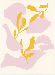New in Portfolio: Marigold Branding - Cocorrina