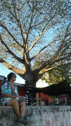 Diana Rodríguez con su vestido #KIKAMAGA Recorriendo el Caribe, aquí en el Banco, Magdalena.   @leonmurcia   #Vístetecomoquieras #barranquilla #colombia #vestido #mujer #tiendaonline #flores #estampado #naturaleza #arbol #río #ríomagdalena #banco #magdalena #casual